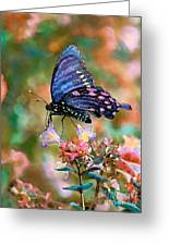 I Dream Of Rainbow Colors Greeting Card