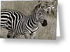 I See Stripes Greeting Card