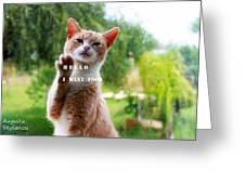 I Want Food Cat Greeting Card