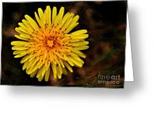 I Want To Be A Flower... Greeting Card
