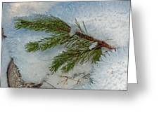 Ice Crystals And Pine Needles Greeting Card