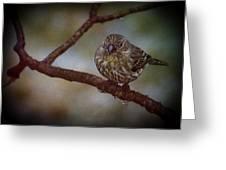 Ice Droplet Bird Greeting Card