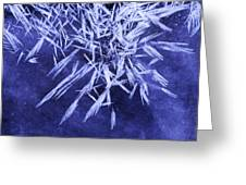 Ice Patterns On Wedge Pond Greeting Card