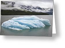 Iceberg In Endicott Arm, Inside Greeting Card