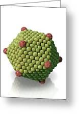 Icosahedral Virus Particle, Artwork Greeting Card