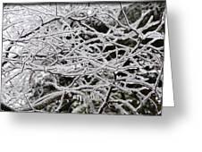 Icy Dreams Greeting Card
