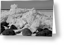 Icy Shoreline In Black And White Greeting Card