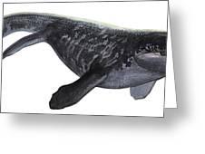 Illustration Of A Prognathodon Greeting Card