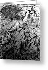 Immage In Stones Greeting Card