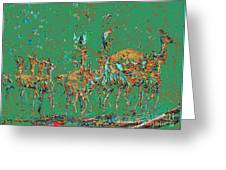 Impalas In The Green Bush Greeting Card