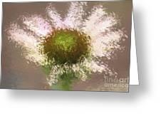 Impressionistic Echinacea Greeting Card