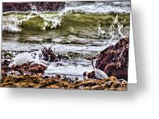 In-coming Tide Greeting Card