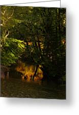 In Golden Moments Of Reflection Greeting Card
