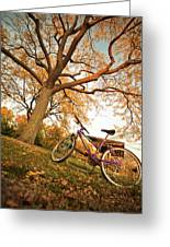 In Search Of Fall Colors Greeting Card