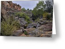 In The Arroyo   Greeting Card by Ron Cline
