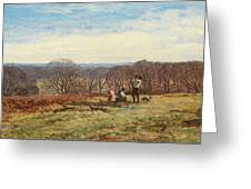 In The New Forest Greeting Card