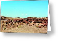 In The Petrified Forest In Arizona Greeting Card