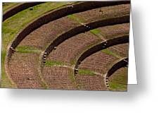 Inca Crop Terraces At Moray Greeting Card