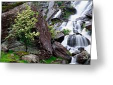 Inchquinn Waterfall, Beara Peninsula Greeting Card