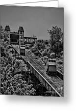 Incline Bw Greeting Card by Arthur Herold Jr
