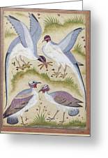 India: Pheasants Greeting Card