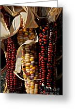 Indian Corn Greeting Card by Susan Herber