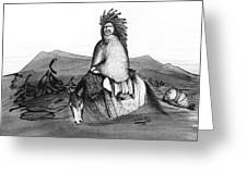 Indian Horse Greeting Card