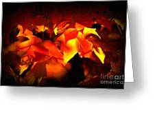 Indian Summer Sparkle Greeting Card