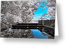 Infrared Summer 2 Greeting Card
