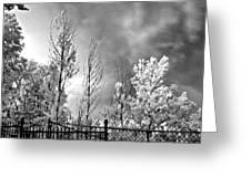 Infrared Summer Storm 2 Greeting Card