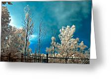 Infrared Summer Storm Greeting Card