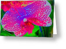 Inner Beauty - Orchid - Gardens Greeting Card