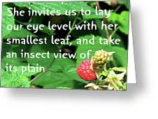 Insect View Greeting Card
