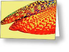 Insect Wing Study Greeting Card
