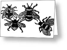 Insects: Bees Greeting Card