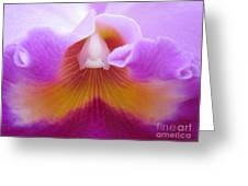 Inside An Orchid's Heart Greeting Card