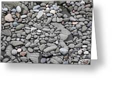 Intertidal Shore Greeting Card