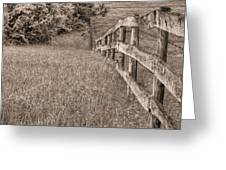 Into The Distance Bw Greeting Card