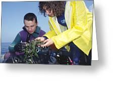 Invasive Seaweed Control Greeting Card