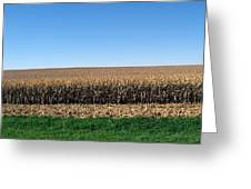 Iowa Landscape Iv Greeting Card