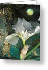 Iris Moon Greeting Card by George  Page