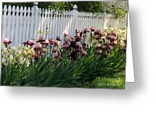 Iris With Fence  Greeting Card