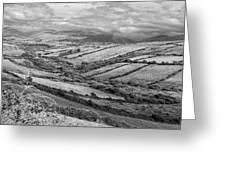 Irish Fields Greeting Card