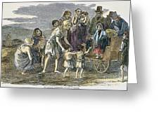 Irish Great Potato Famine Greeting Card