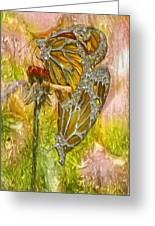 Iron Butterflys Greeting Card by Jack Zulli