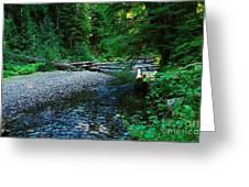 Iron Creek  Greeting Card