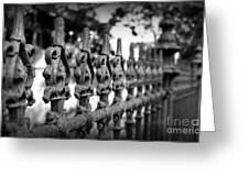 Iron Fence 2 Greeting Card by Perry Webster
