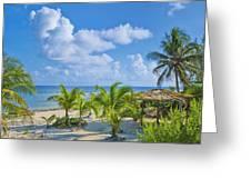 Island Beauty Greeting Card