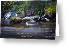 It Is A Wholesome....... Greeting Card by Karen Lewis