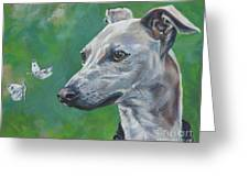 Italian Greyhound With Cabbage White Butterflies Greeting Card